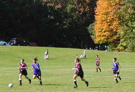 Sports & Recreational—A Variety of Options Online